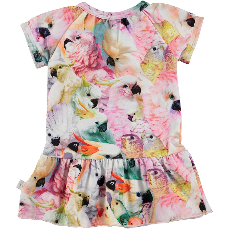 Birth Baby Dress - Clothing Brand Reviews